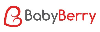 babyberry startup in india