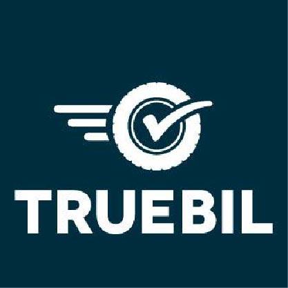 truebil startup in india 2017